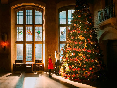 Christmas in the Canadian Rockies Winter Train Vacation | Via Rail