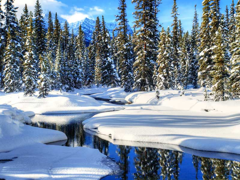 Christmas in the Canadian Rockies Winter Train Vacations | Bow River