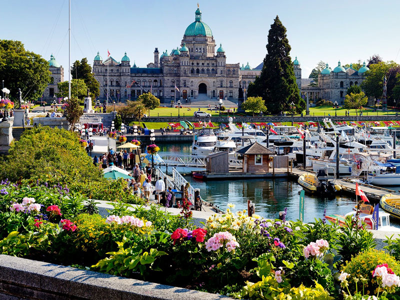 Victoria with Whales and Floatplane Package | Victoria