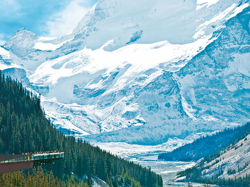 Grizzly Bears & the Canadian Rockies Train Vacation | Glacier Skywalk Canadian Rockies