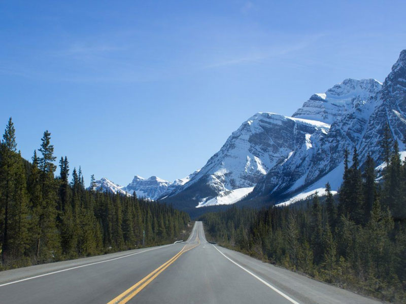 Rail & Drive through the Canadian Rockies | Driving the Icefield Parkway