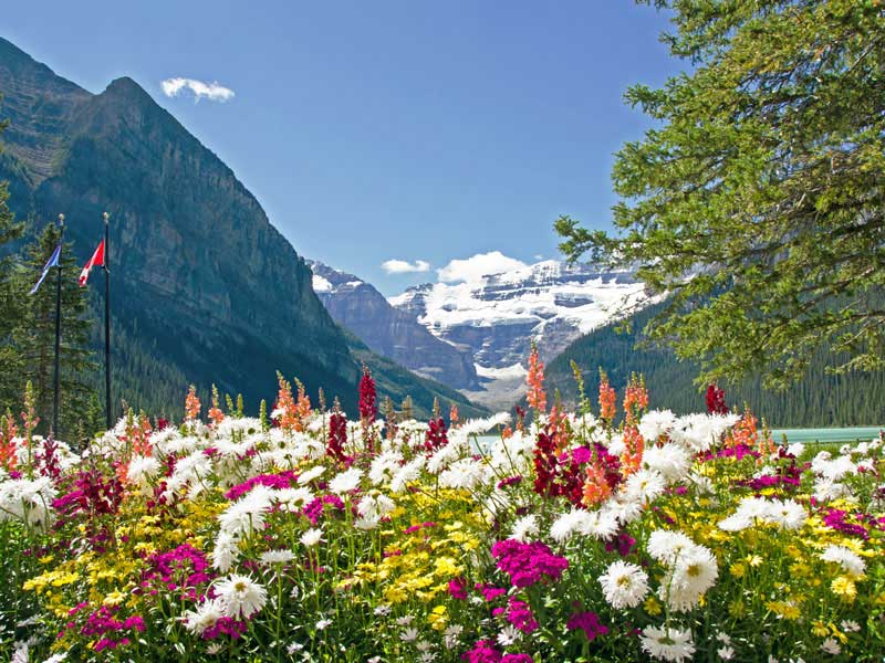 Western Canada & Canadian Rockies Road Trip Itinerary | lake Louise