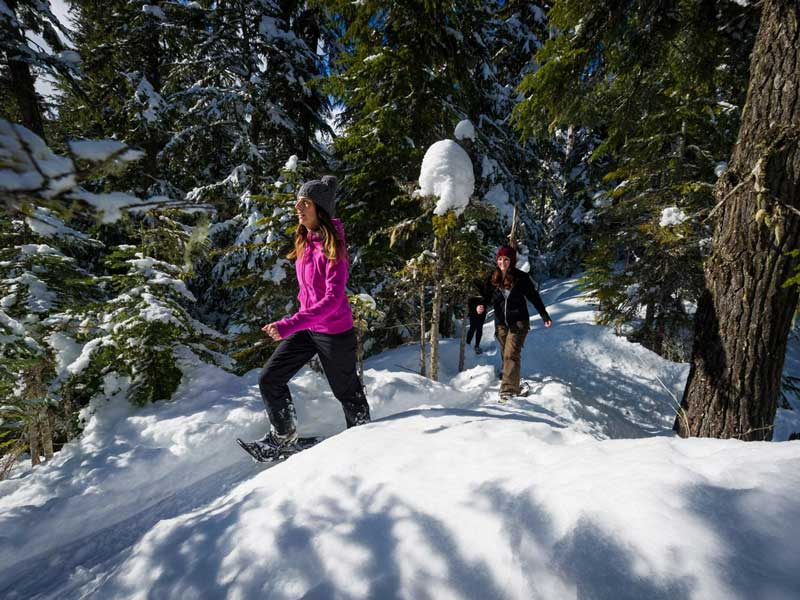 Whistler Winter Vacation | Ultimate Winter Playground | Snow Shoeing